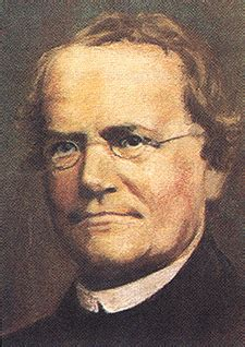 biography gregor mendel bio 304 ecology evolution genetics