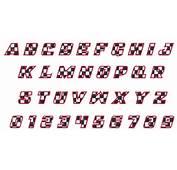 RACING FONT Embroidery Font  AnnTheGran