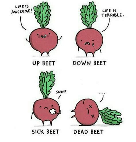 life  awesome life  terrible  beet  beet sniff