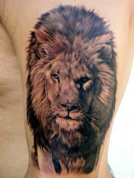 lion biography in english a life like lion tattoo lion tattoo pinterest