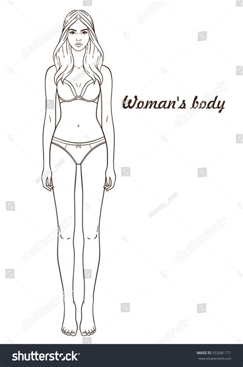 vector illustration womans body isolated outline stock