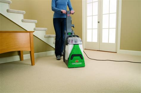 5 best home carpet steam cleaners for pet stains
