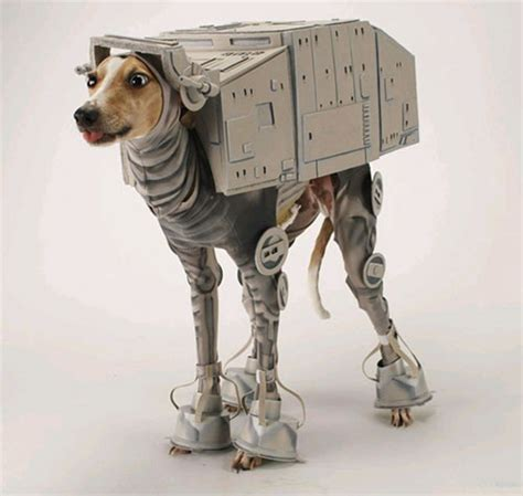 wars puppy 15 dogs dressed as wars characters