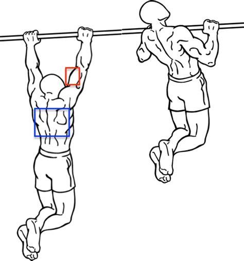 fitness zuhause ohne gerã te heimtraining ohne ger 195 164 te muskelaufbau trainingsplan