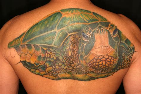 The House Of Green Sea Turtle T A T Gallery Green Sea Turtle Tattoos