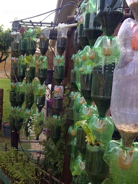 garden in a bottle build your own hanging garden of recycled plastic bottles