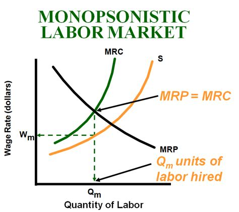 Global Competition And The Labour Market ap micro review