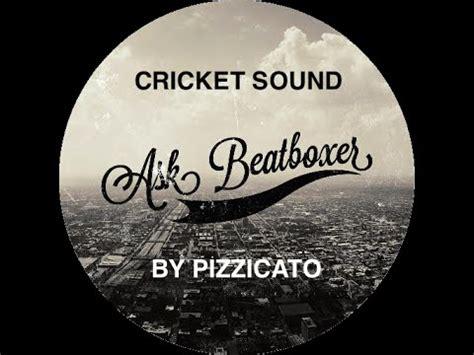 beatbox cricket tutorial cricket sound tutorial by pizzicato youtube