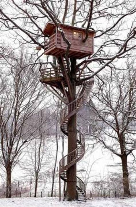 awesome tree houses look at these amazing tree houses pictures do not you