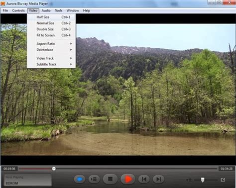 full version perfect player software free download software full version aurora blu