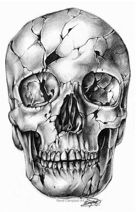 resultado de imagen de calavera dibujo realista