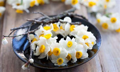 decorazioni con i fiori tavola di pasqua 5 decorazioni con i fiori freschi leitv