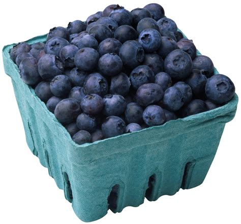 5 proven benefits of blueberries di nutrition