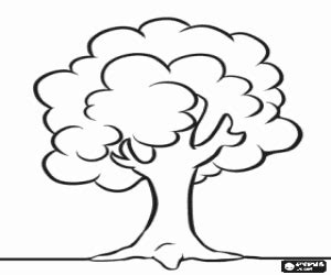 Image Simple Tree Coloring Page Download Simple Tree Coloring Pages