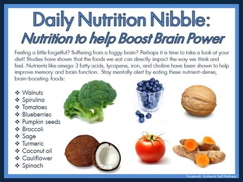 12 Nutrition Tips For Increasing Brain Power by Daily Nutrition Nibble Nutrition To Help Boost Brain