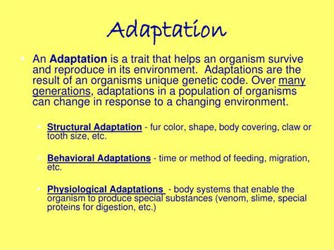 evolution how adapts to a changing environment with 25 projects build it yourself books ppt evolution change time powerpoint presentation