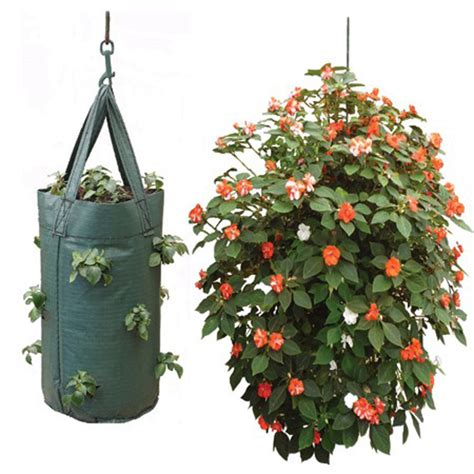 2 hanging tomato planter bag pouch growbag grow fruit