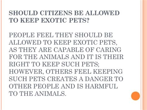 Animals As Pets Essay by Keeping Animals As Pets Essay