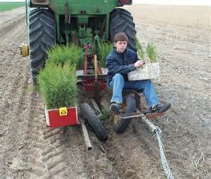 tree planter tree planting done right titan outlet store