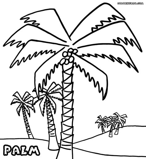 palm tree template az coloring pages palm tree coloring pages to print az coloring pages
