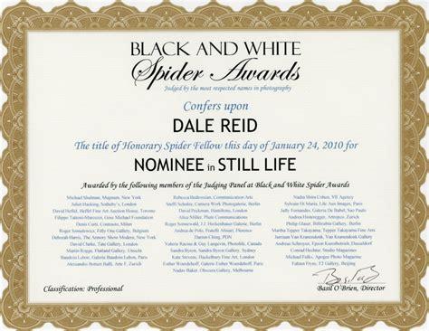 professional award certificate template award certificate template