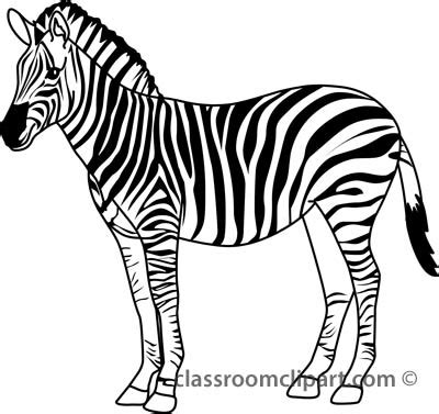 Zebra Outline Picture by Animals Zebra 328 3 Outline Classroom Clipart