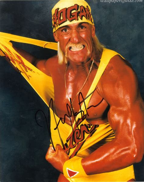 classic wrestling wallpaper all time hulk hogan stunning wallpapers 521