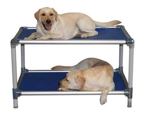no chew dog bed aluminum dog bunk bed kuranda dog beds