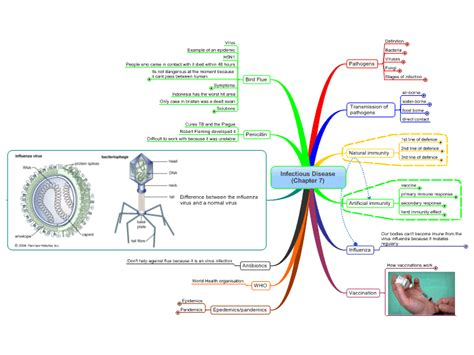 Virus Of The Mind The New Science Of The Meme - controling infectious disease free mind map download
