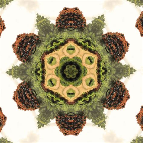 kaleidoscope design maker try kaleidoscope maker and turn your photo into mandala