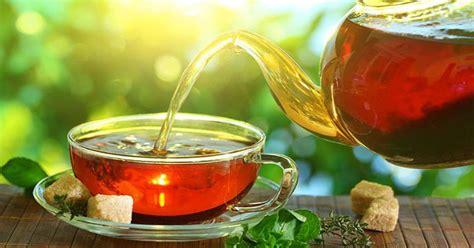 Teh Sariwangi Per Dus khasiat manfaat dari daun teh asli nubroadcast