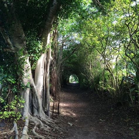Bermuda Phone Number Lookup Bermuda Railway Trail Caribbean Top Tips Before You Go With Photos Tripadvisor