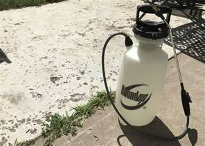 how to kill weeds on patio how to get rid of weeds on a patio and keep them from