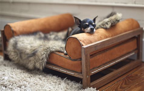 Oga Home Design Products by Architect Pets Makes Modernist Doggy Daybeds And