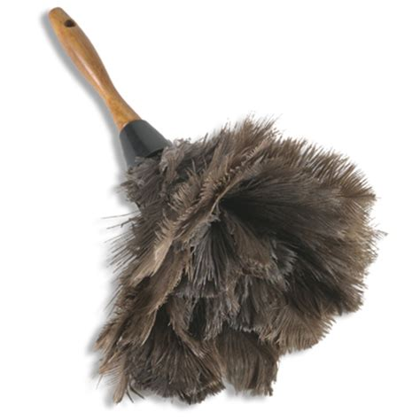 house cleaning tip how to choose a feather duster