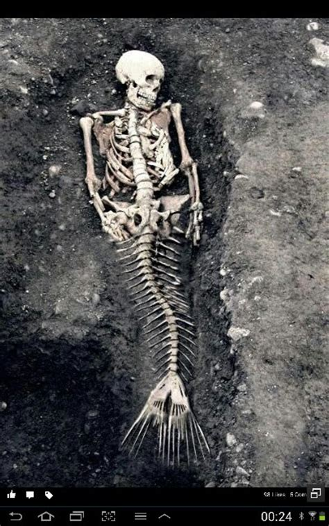 eyeball tattoo snopes skeleton fiji mermaid skull power pinterest