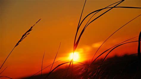 Free Hd by Sunset Wallpapers Hd Pixelstalk Net