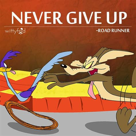 funny coyote road runner 100 best images about quot wile e coyote road runner