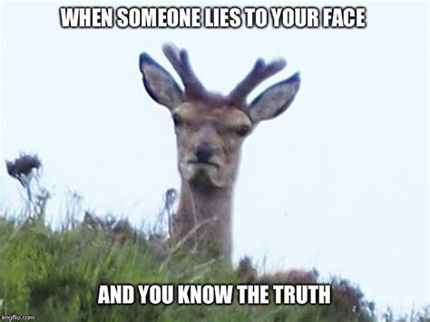 deer meme like my ex imgflip