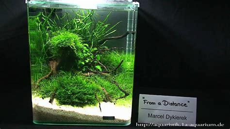 nano aquascapes  hannover part  youtube