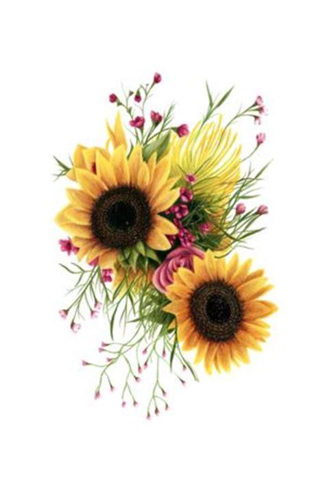Home Paintings Decoration Ideas 25 best ideas about sunflower drawing on pinterest