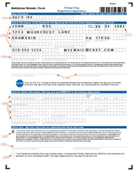 akc puppy registration how to fill out your akc foreign registration form