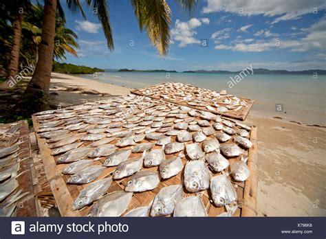 boat crash barton lake palawan island stock photos palawan island stock images