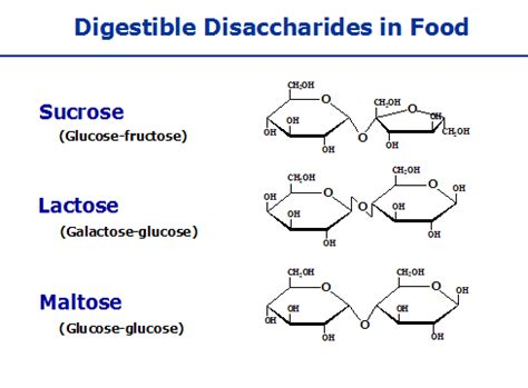 carbohydrates lactose disaccharides function structure exles of