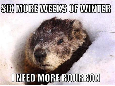 Groundhog Meme - 6 more weeks of winter the memes you need to see heavy