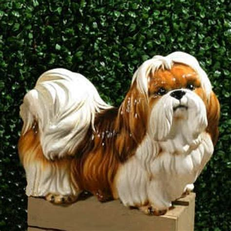 rottweiler shih tzu 111 best images about statues on