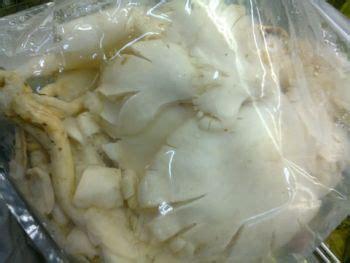 jamur tiram jamur tiram  fungsi  mengolah