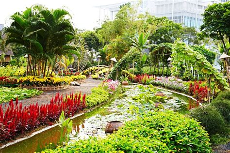 Flower Garden Hanoi Tet New Year My Guide