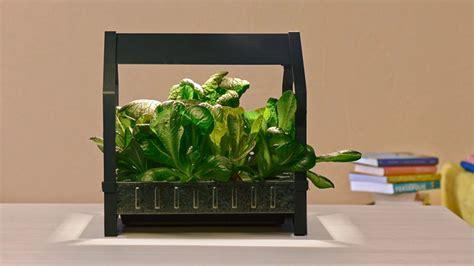 ikea krydda ikea is introducing a new indoor gardening series
