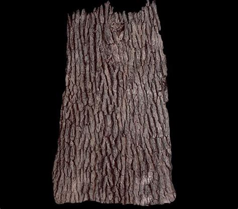 Yoan Texture Dress B L F 27 best wall and wood colors images on wood